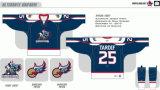 Customized Homens Mulheres Crianças Liga de Hóquei Americana Grand Rapids 2008-2016 Griffins Hóquei no Gelo Jersey