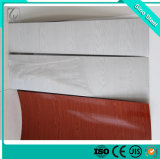 Lamiera di acciaio galvanizzata ricoperta colore tuffato caldo PPGL/di PPGI in bobina