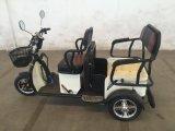 بنغلادش كهربائيّة مسافر درّاجة ثلاثية [ريكشو] ذاتيّة مع برهان