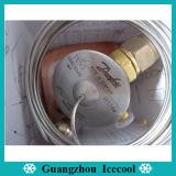Valvola Refrigerant Ten2 068z3348 di espansione di R134A