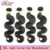 Cheveux humains brésiliens initiaux de Vierge de vente en gros de prix usine