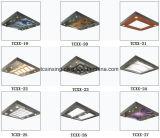 precio de fábrica techo de cabina de ascensor
