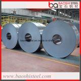 Bobina de aço laminada do aço de Baoshi no preço barato Spce DC03 St12