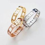 Geschenk-Form-Zubehör-GoldEdelstahl-Armband-Schmucksachen
