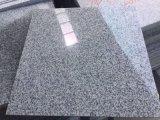 Bester verkaufender Außengranit deckt Fußboden-Fliese-chinesische graue Granit-Platte des Garten-G602 mit Ziegeln