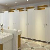 Fmh Light Grey Color HPL Shower Partition de toilette avec division Urinoir
