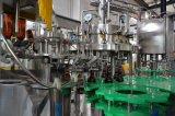 Het Bier die van uitstekende kwaliteit van de Fles van het Huisdier en het Brouwen Machine vullen