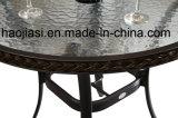 Openlucht /Rattan/de &Table Reeks van de Stoel van de Rotan van het Meubilair van de Tuin/van het Terras/van het Hotel (HS 3325C & HS 6080BDT)