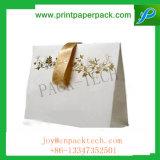 Sacchetto personalizzato della carta kraft Dell'indumento di colore di stampa con la maniglia di seta