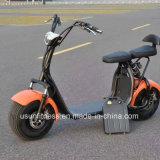 La motocicletta elettrica adulta con rimuove la batteria