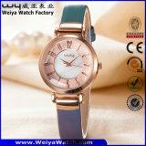 Reloj de la fábrica de la mujer del cuarzo de la correa de cuero de OEM/ODM (Wy-093E)