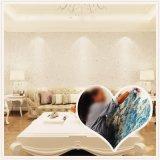 Revêtement mural en plâtre de soie protecteur INDOOR Fiber Décoration revêtement mural