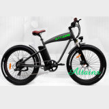 Elektrischer Strand-Kreuzer-Fahrrad-hinteres Rad-elektrischer Fahrrad-Installationssatz