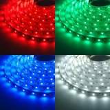 Striscia flessibile unica di 13.5mm SMD96 LEDs/M 5050RGBW