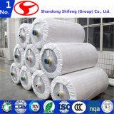Shifeng sumergió la tela de la cuerda del neumático del nilón 6 para la banda transportadora/de nylon entorpece/la tela de nylon/el nilón de nylon del algodón de la tela/la red de nylon de los pescados/la línea de nylon/la red de pesca de nylon
