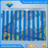 Verpakking van de Zak van pvc van de douane de Promotie Transparante met Ritssluiting