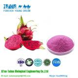 ISO genehmigte 100% reines natürliches organisches der Drache-Frucht-Puder, Qualitäts-Drache-Frucht-Puder