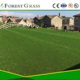 Landschaftsgestaltung des künstlichen Rasens für Hof