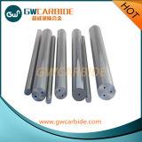 Fabricante de la superficie pulida de varilla de carburo de tungsteno