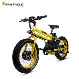 Scooter elétrico de 48V 20ah Scooter elétrico e bicicleta elétrica de 450W Green City