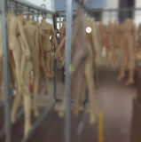 Las muñecas grandes del sexo del pecho del sexo de la piel de Tan del asno grande realista europeo de las muñecas con el sexo anal de la vagina oral verdadera esquelética del silicón del metal juegan el juguete del sexo para el hombre