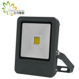 2018 más nuevos 5 años de la garantía LED 30W de iluminación de la inundación con las virutas de la MAZORCA