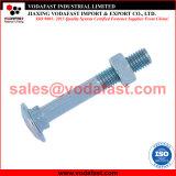 ISO 8677 DIN 603 de Ronde Bout van het Vervoer van de Hals van de Paddestoel Hoofd Vierkante met Geplateerde het Zink van de Noot