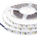 Tira flexível original de 13.5mm SMD96 LEDs/M 5050RGBW