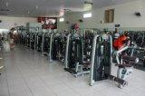 Tz6050三頭筋のすくいの体操の適性かWholsaleの体操の三頭筋の練習機械または強さ機械