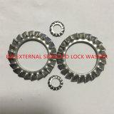 Rondelle de freinage dentelée par External de l'acier inoxydable DIN6798A-M10