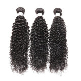 熱い販売のねじれた巻き毛のブラジルの自然な織り方の人間の毛髪の拡張