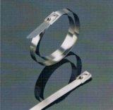304 de Semi Polyester Met een laag bedekte Banden van het roestvrij staal