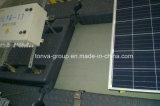 Plataforma do Painel Solar Flutuante de HDPE tornando Sopradoras de Extrusão