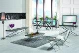 Muebles superiores de madera imitados modernos de la sala de estar de la mesa de centro del acero inoxidable