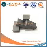 Las placas de carburo de tungsteno para moler