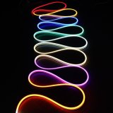 Licht van de Decoratie van het LEIDENE het Digitale Neon DC24V van het Neon Flex IP65 Waterdichte RGB