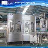 Máquina pura en botella automática de la producción del agua