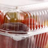 Limpar tira de plástico descartáveis Caixa Alimentar petiscos de frutos de armazenamento de Embalagens com tampa