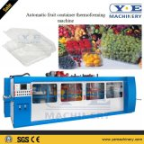 Machine en plastique automatique de Thermoforming de conteneur de fruit avec le poinçon