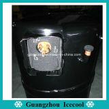 Compressor Pistontype H2eb243abkb de R22 20600W 220V/50Hz 2HP Bristol para refrigeradores do condicionamento de ar/água do mar