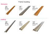 Водонепроницаемый новое оформление материала рамы для литья под давлением WPC настенной панели (F01)