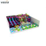 Les enfants Vasia Hot Sale à l'intérieur de l'équipement de terrain de jeu