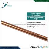 La plus défunte canne modèle rechargeable avec le trou bronzé neuf par radio d'alliage de bâton de marche