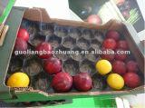 Ptomotiion hoher Grad-Vakuum bildete kundenspezifische Wegwerf-pp.-Tellersegmente für das Frucht-Verpacken