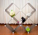 Verscheidenheid van de Kubus van de Opslag van de Vertoning, het Kabinet van het Stuk speelgoed (fh-AL0016)
