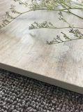 Mattonelle di pavimento di legno lustrate porcellana rustica (600X900mm)