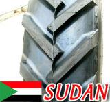 Аграрный трактор утомляет (14.9-24 13.6-28 750-16) горячий продавать для Судан