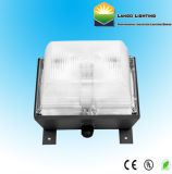 60W Lámpara de inducción Garaje techado de iluminación (LG0379A)
