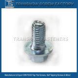 DIN7500d/Eの糸の圧延の蛇口のTiteねじ