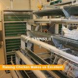 Type galvanisé de l'IMMERSION chaude H de la Chine cage de poulet de couche de batterie pour la ferme avicole du Nigéria